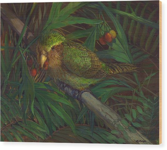 Kakapo Nighttime Feeding Wood Print by ACE Coinage painting by Michael Rothman