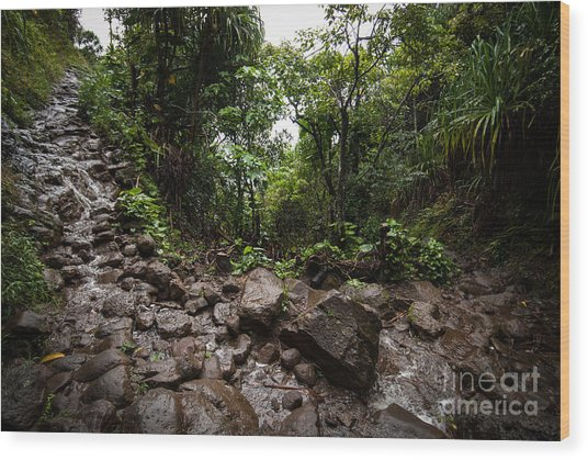 Kalalau Trail Na Pali Coast Wood Print