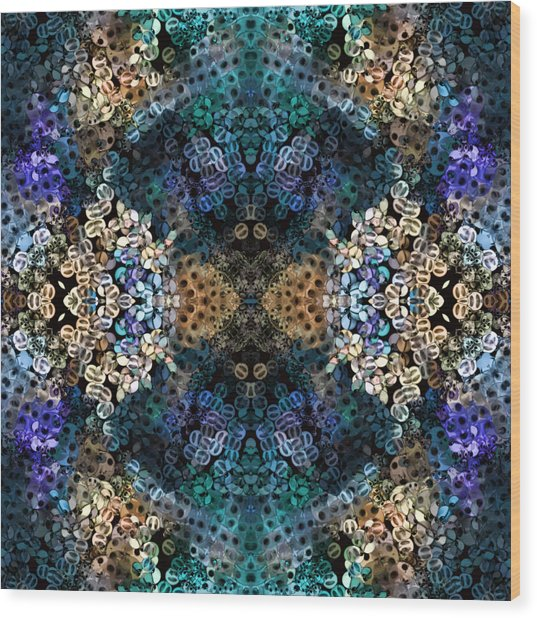 Kaleidoscopic 1 Wood Print by Gabour Demans