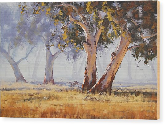 Kangaroo Grazing Wood Print by Graham Gercken