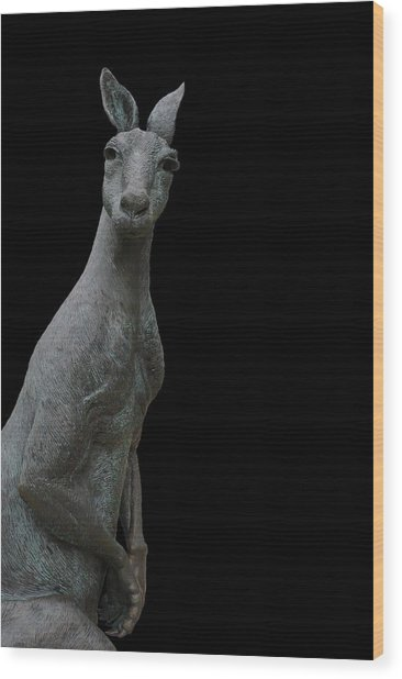 Kangaroo Smith On Black Wood Print by Gregory Smith