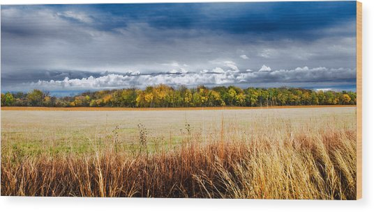 Kansas Fall Landscape Wood Print