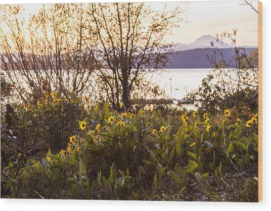 Karel's View Wood Print