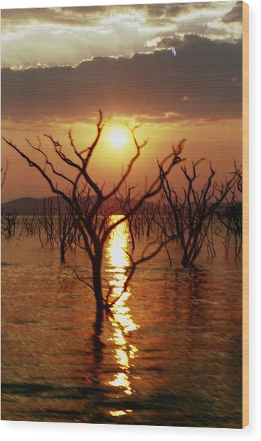 Wood Print featuring the photograph Kariba Sunset by Jeremy Hayden