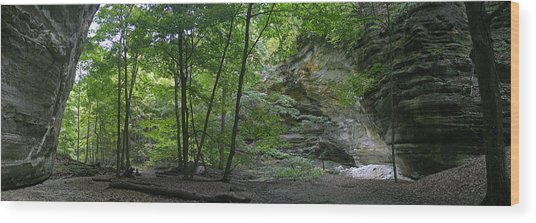 Kaskaskia Canyon Wood Print by Gary Lobdell