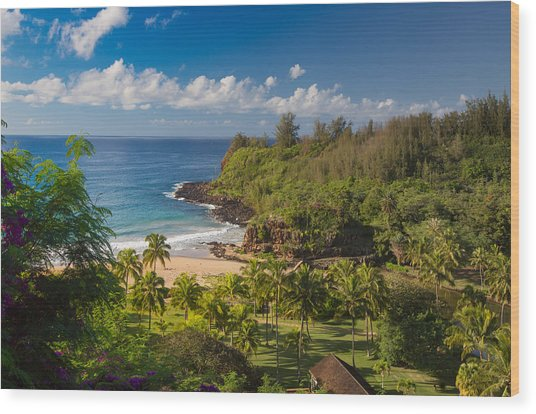 Kauai Allerton Estate Wood Print by Sam Amato
