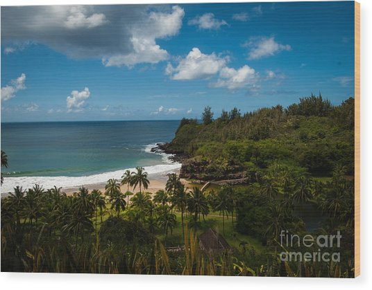 Kauai South Shore Jungle Wood Print
