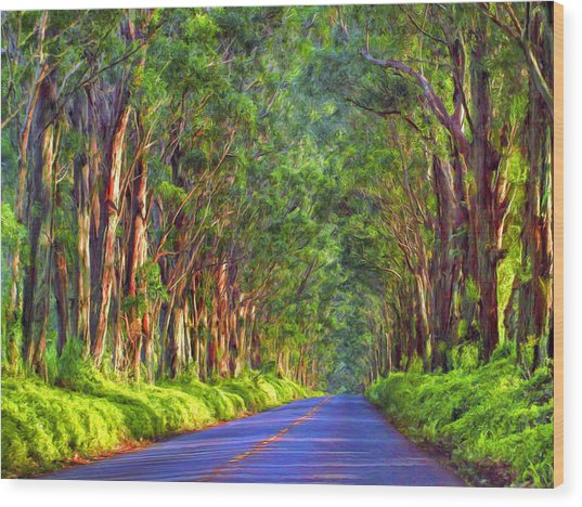 Kauai Tree Tunnel Wood Print