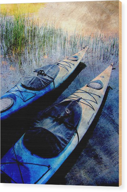 Kayaks Resting W Metal Wood Print