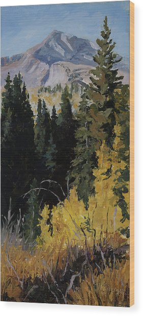 Kebler Pass Wood Print
