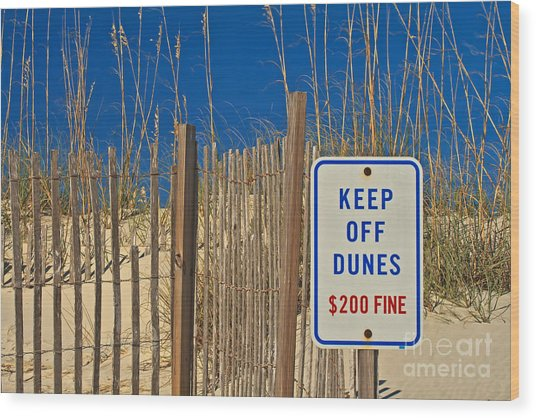 Keep Off Dunes Wood Print