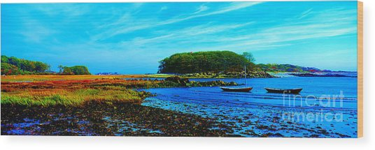 Kennebunkport  Vaughn Island  Wood Print
