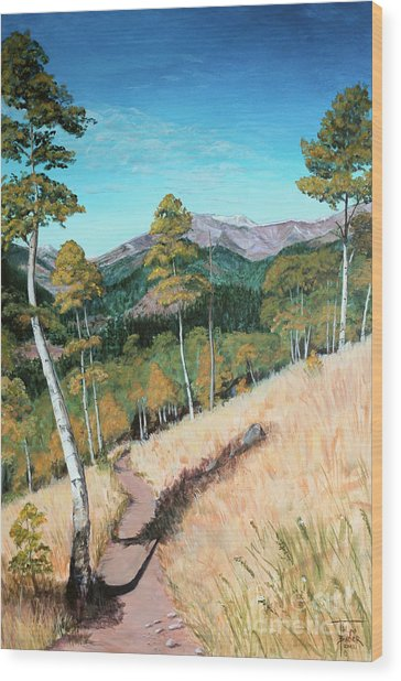 Kenosha Pass - Colrado Trail Wood Print