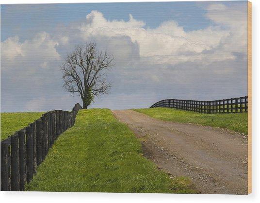 Kentucky Horse Farm Road Wood Print