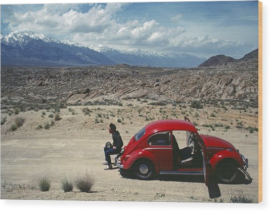 Wood Print featuring the photograph Kevin And The Red Bug by David Bailey