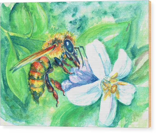Key Lime Honeybee Wood Print