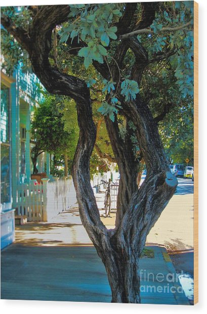 Key West Beauty Wood Print by Claudette Bujold-Poirier