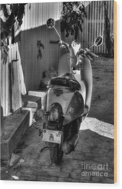 Key West Scooter Bw Wood Print by Mel Steinhauer