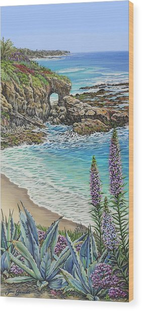 Keyhole Rock Laguna Wood Print