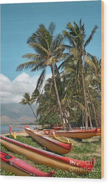 Wood Print featuring the photograph Sugar Beach Kihei Maui Hawaii by Sharon Mau