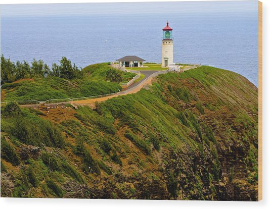 Kilauea Lighthouse In Color Wood Print