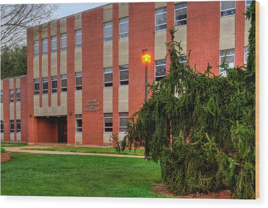 Killian Education And Psychology Building Wood Print