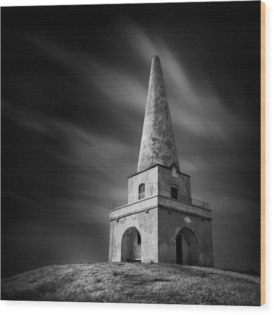 Killiney Hill Wood Print