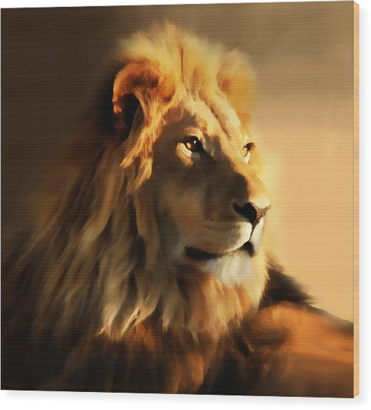 King Lion Of Africa Wood Print
