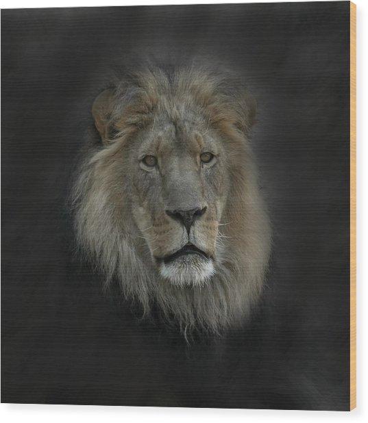 King Of Beasts Portrait Wood Print