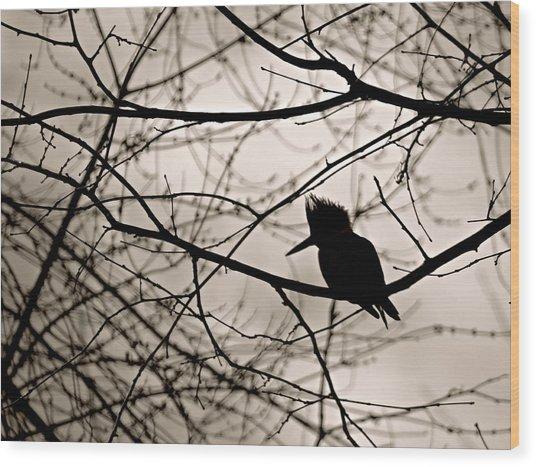 Kingfisher Silhouette Wood Print
