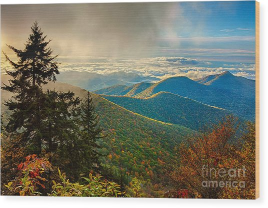 Kiss Of Sunshine - Blue Ridge Mountains I Wood Print
