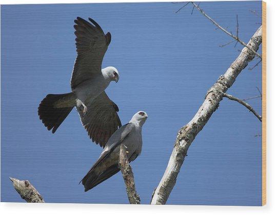 Kites In Love Wood Print