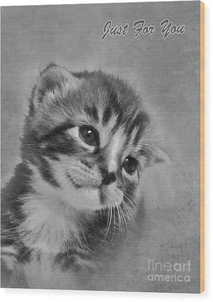 Kitten Just For You Wood Print