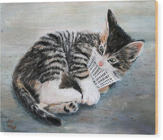 Kitten With Birdie Wood Print