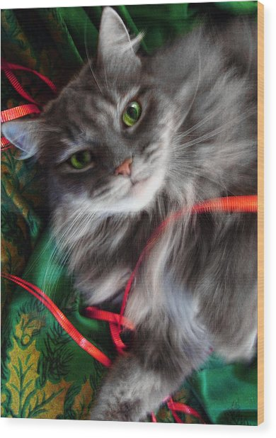 Kitty Christmas Card Wood Print