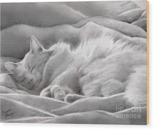 Kitty In The Covers Wood Print