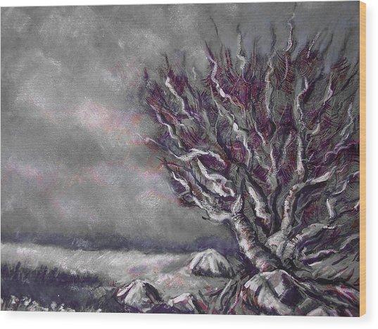 Knarly Tree Wood Print by Jon Shepodd