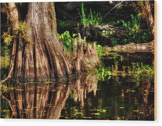 Knees Deep In A Louisiana Bayou Wood Print