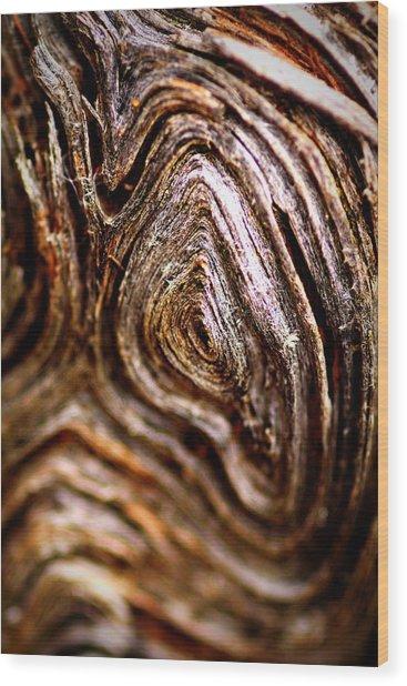 Knots Wood Print by Jacqui Collett