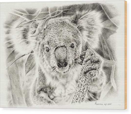 Koala Garage Girl Wood Print