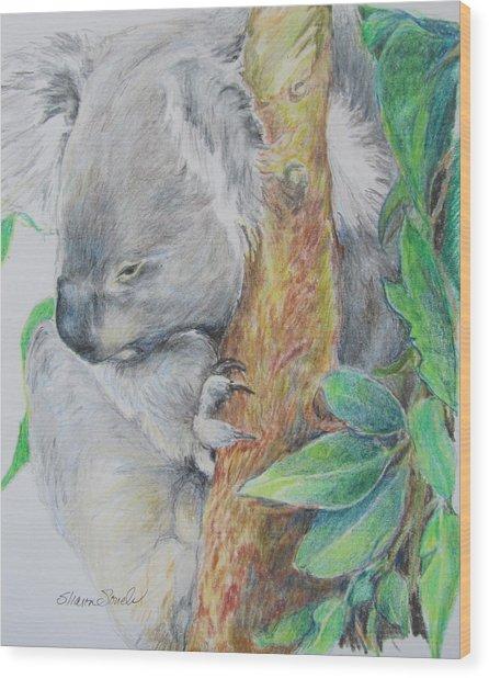 Koala Nap Time Wood Print