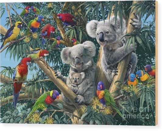 Koala Outback Wood Print