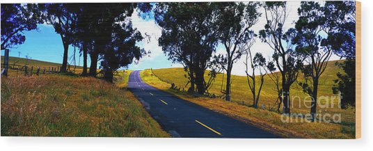 Kohala Mountain Road  Big Island Hawaii  Wood Print