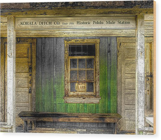 Kohala Mule Station Wood Print
