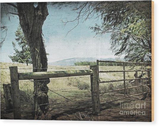 Kohala Ranch Wood Print by Ellen Cotton