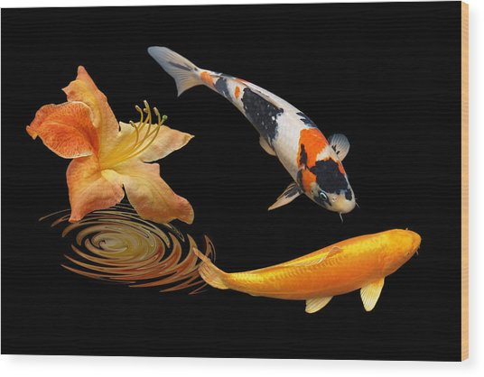 Koi With Azalea Ripples Wood Print