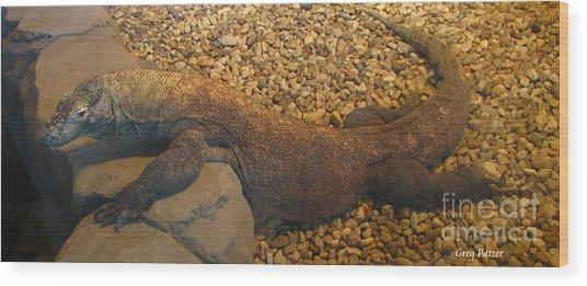 Komodo Wood Print by Greg Patzer