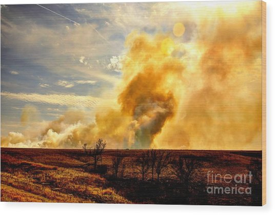 Konza Prairie Burn Wood Print