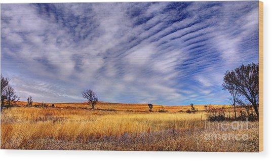Konza Prairie Pano Wood Print