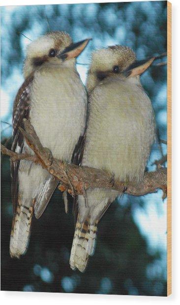 Kooka Duet Wood Print